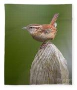 Wren Chirping Fleece Blanket