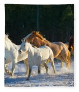 Wyoming Horses Fleece Blanket