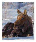 Wyoming Sunbathing Fleece Blanket