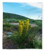 Wyoming Wildflowers Indian Paintflowers Fleece Blanket
