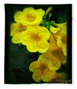 Yellow - Amarillo - Jaune Fleece Blanket
