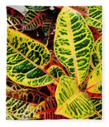Yellow And Green Croton Fleece Blanket