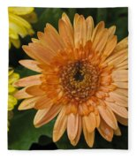 Yellow And Peach Daisy Fleece Blanket