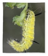 Yellow Caterpillar 1 Fleece Blanket