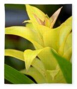Yellow Cream Tropical Fleece Blanket