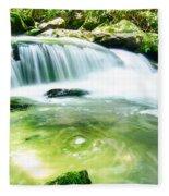 Yellow Creek Falls Great Smoky Mountains Fleece Blanket