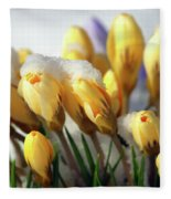 Yellow Crocuses In The Snow Fleece Blanket