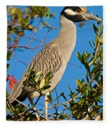 Yellow Crown Night Heron Fleece Blanket