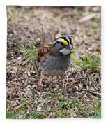 Yellow Crowned Sparrow Fleece Blanket