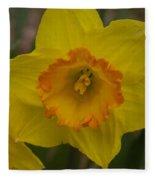 Yellow Daffies Fleece Blanket