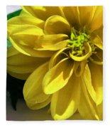 Yellow Dahlia Closeup Fleece Blanket