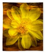 Yellow Dahlia Under Water Fleece Blanket