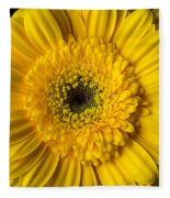 Yellow Daisy Close Up Fleece Blanket