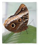 Yellow-edged Giant Owl Butterfly #3 Fleece Blanket