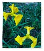 Yellow Flag Iris Fleece Blanket