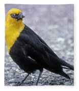 4m09157-02-yellow Headed Blackbird Fleece Blanket