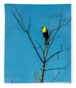 Yellow-headed Blackbird Fleece Blanket