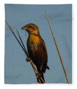 Yellow-headed Blackbird With Dragonfly Fleece Blanket