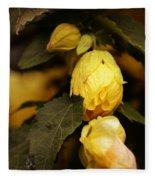 Yellow Hibiscus Late Afternoon Fleece Blanket