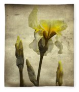 Yellow Iris - Vintage Colors Fleece Blanket