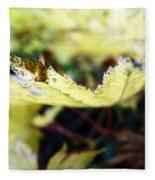Yellow Japanese Maple Fleece Blanket