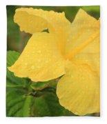 Yellow Fleece Blanket
