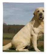 Yellow Labrador Dog Fleece Blanket