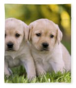 Yellow Labrador Puppies Fleece Blanket