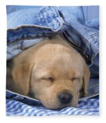 Yellow Labrador Puppy Asleep In Jeans Fleece Blanket