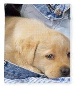 Yellow Labrador Puppy In Jeans Fleece Blanket