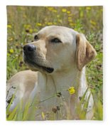 Yellow Labrador Retriever Fleece Blanket