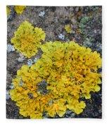 Yellow Lichen Fleece Blanket