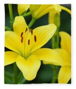 Yellow Lilly 8107 Fleece Blanket