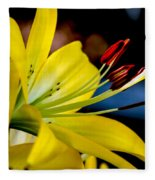 Yellow Lily Anthers Fleece Blanket