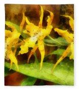 Yellow Miltassia Orchids Fleece Blanket
