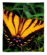 Yellow Orange Tiger Swallowtail Butterfly Fleece Blanket