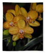 Yellow Orchids Fleece Blanket