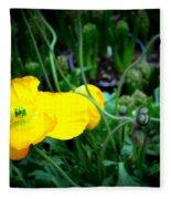 Yellow Poppy Xl Format Floral Photography Fleece Blanket