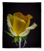 Yellow Rose 1 Fleece Blanket