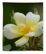 Yellow Rose 2013a Fleece Blanket