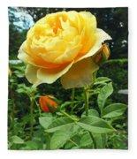 Yellow Rose And Buds Fleece Blanket
