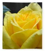 Yellow Rose Ll Fleece Blanket