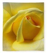 Yellow Rose Softness Fleece Blanket