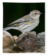Yellow-rumped Warbler Hen Fleece Blanket