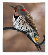 Yellow-shafted Northern Flicker Fleece Blanket