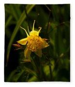 Yellow Splendor Fleece Blanket