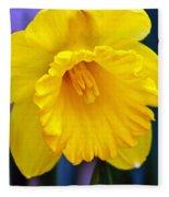 Yellow Spring Daffodil Fleece Blanket