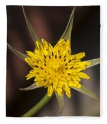 Yellow Star Flower Fleece Blanket