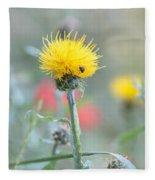 Yellow Star-thistle Fleece Blanket