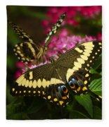 Yellow Swallowtail Butterflies  Fleece Blanket